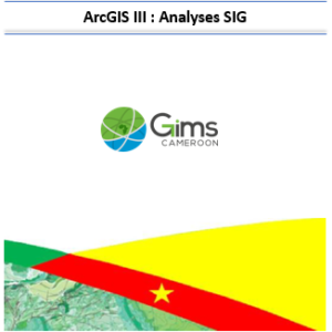 ArcGIS III: SIG Analyses